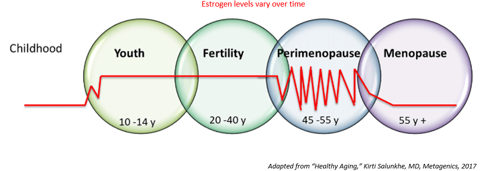 Estrogen levels Perimenopause Menopausal Transition