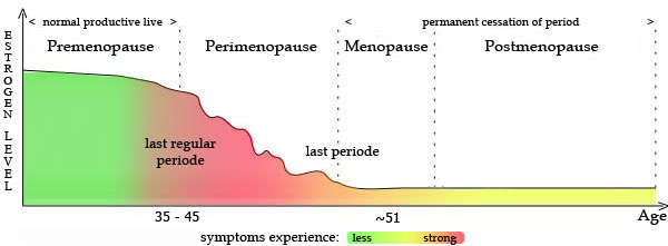 Perimenopause and the Menopausal Transition